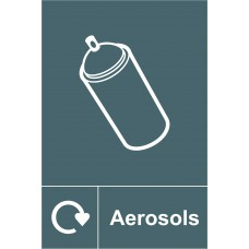 Recycling: Aerosols - SAV (150 x 200mm)