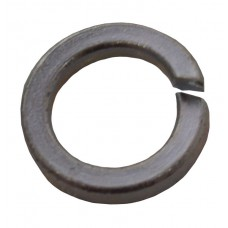 M8 ZP Spring Washer