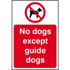 No dogs except guide dogs - SAV (200 x 300mm)