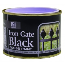 180ml Iron Gate Black Gloss Paint (DGN)