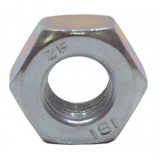 M10 ZP Steel Hex Nuts  (Pack of 6)