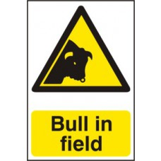 Bull in field - PVC (200 x 300mm)