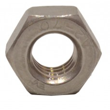 M10 SS Hex Nuts (Pack of 2)