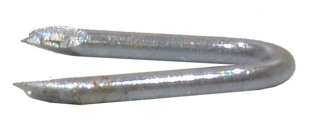 Galvanised Netting Staples